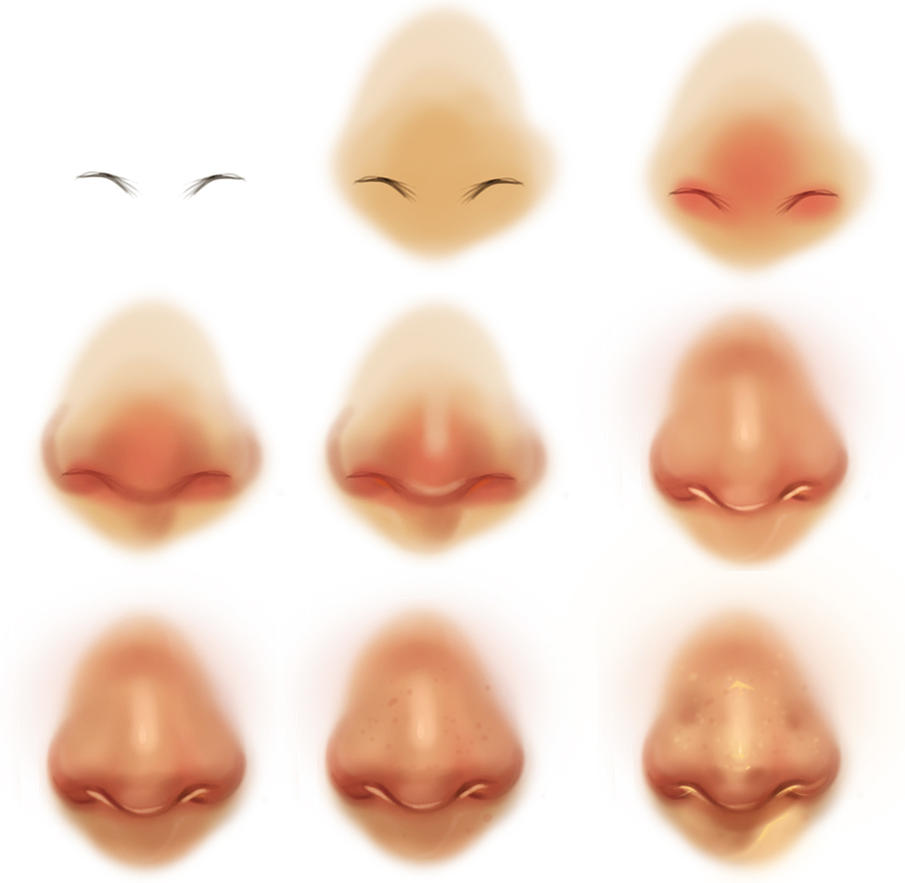 -http://th09.deviantart.net/fs71/PRE/f/2014/133/3/5/nose_reference_tutorial_by_ryky-d7i7spd.jpg