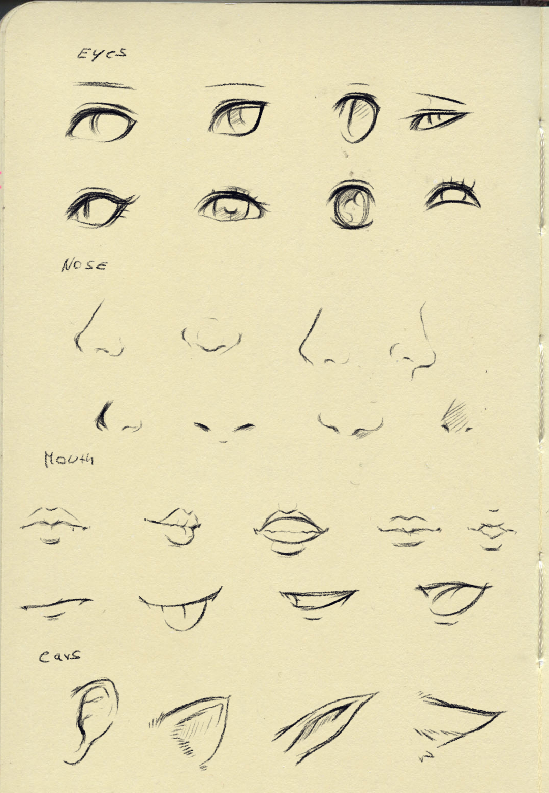 Reference (eyes,nose,mouth,ear)