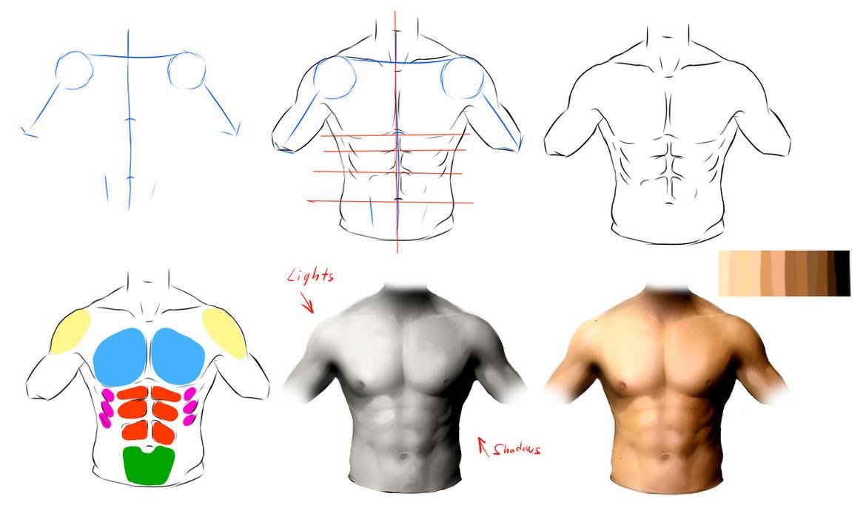 Male anatomy ref by ryky on DeviantArt
