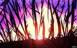 Sunset  (10 min speedpainting )