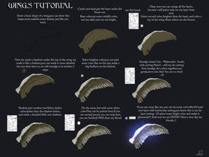 Easy way to paint a wings