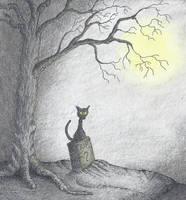 Cat on Grave by DesolateProphet