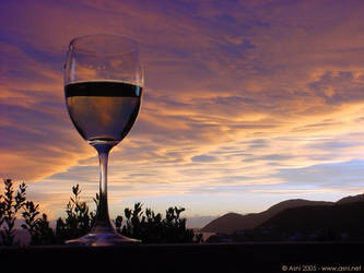 New Zealand Wine 11 by frodo-lives-photo