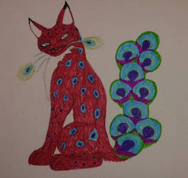 Paafugl Katt