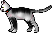Wth Bone has a rainbow collar by Vincenttheawesome