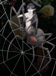 0223 Black Widow Silkweaver