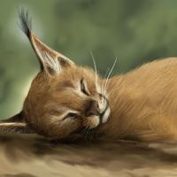 Caracal Speed Paint by ClemiKinkajou