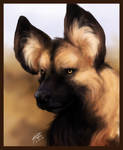 Speed Paint - African Wild Dog