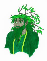 Dryad Wizard