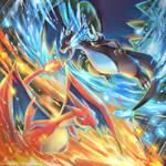 Pokemon : X VS Y