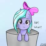 Filly Flitter in bucket.
