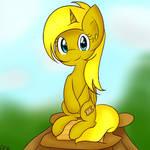 Yellow pone... Ticket