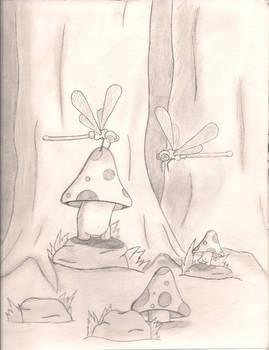gathering shrooms