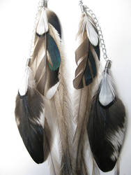 Iridescent Mallard Rooster Wing feather earrings by x0x-Anna