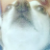 Nosey Dog Icon