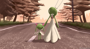 Walking in the road