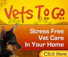 Banner - Vets to go