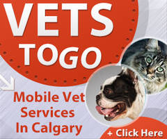 Banner - Vets to go 2