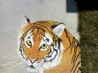 Chalk Art Tiger by maiziedog