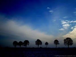 Trees-winter- In colors by TakPoprostuu