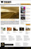 Crucigera.com 2008 website by FutureMillennium