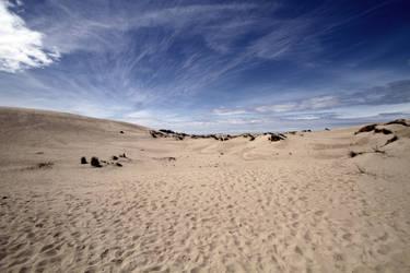 Oregon Dunes by drevilknevel