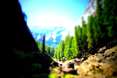 Yosemite NP3