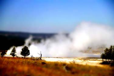 Yellowstone NP 7