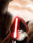 Cheddar Monk Kitty