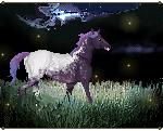 COM: stars of earth