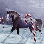 COM: winter wonderland