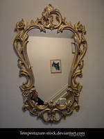 Baroque Style Mirror-Stock by tempestazure-Stock