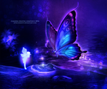 Pixie Butterfly