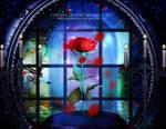 The Rose of True Love