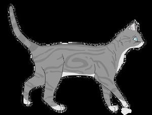 Silver kee cat by Gleasonn