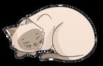 F2U Siamese Button