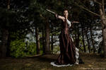Steampunk corset and dress - 2012 collection'