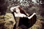 Velvet and brocade corset dress - 2012 collection
