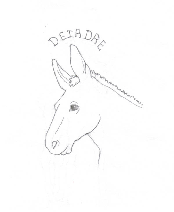 Portrait of a Mule, my Deirdre by ariastrife