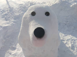 Snow-sculpture: Cocker Spaniel face the camera
