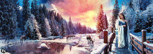 Winter's Dream by WhimsicalBlue