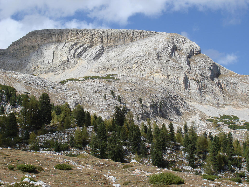Strange Mountain Forgiveness