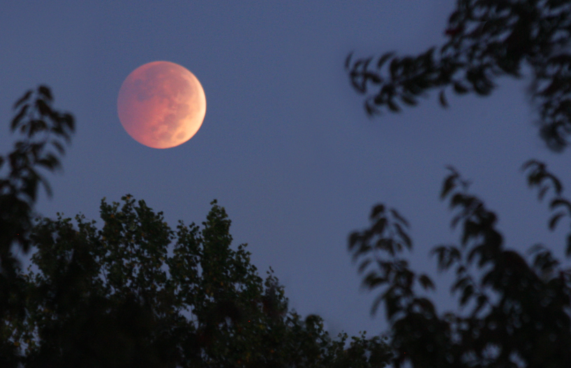 Moon Eclipse 10/8/2014 by AlinaKurbiel