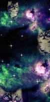 Galaxy Cat Box Background.