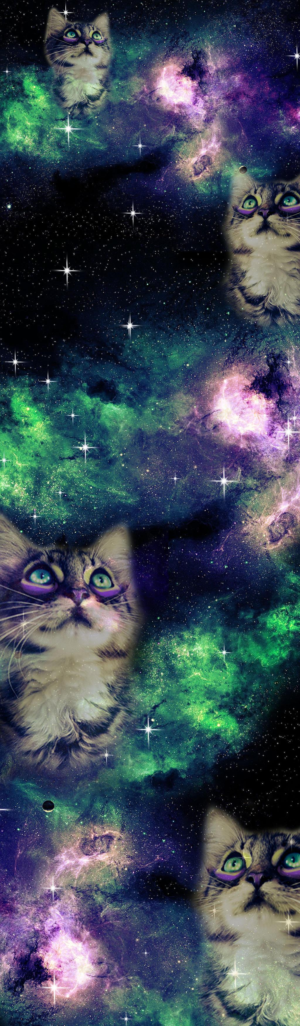 Galaxy Cat Box Background. by Sarah--Elizabeth