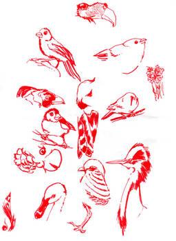 Birds in red