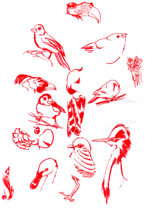 Birds in red