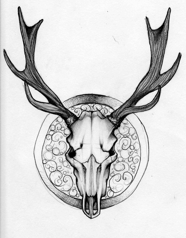 Deer Head Drawings Tumblr deer skull by GiulaiBloomLust