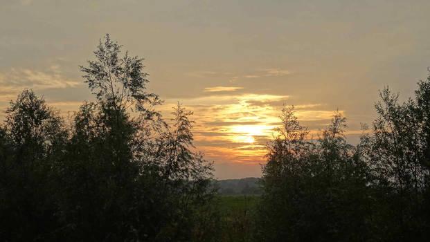 free stock, a nice Sunset