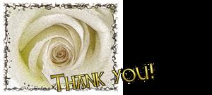 Dankje Roos by FractalCaleidoscope